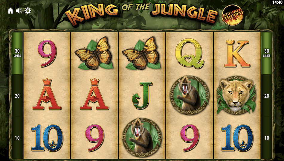 King of the Jungle Red Hot